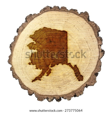 A slice of oak and the shape of Alaska branded onto .(series) - stock photo