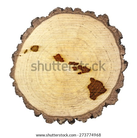 A slice of oak and the shape of Hawaii branded onto .(series) - stock photo