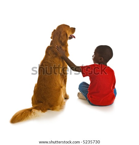 A small African American boy with a beautiful golden retriever dogs.