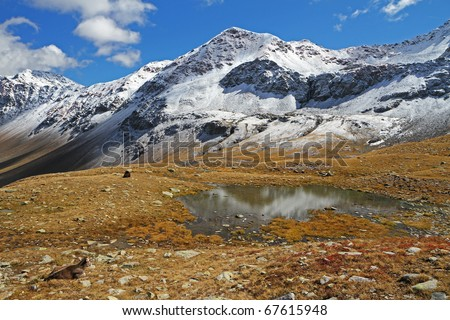 A small alpin lake at 2500 meters on the sea-level after a fall snow storm near Montozzo Pass, Brixia province, Lombardy region, Italy - stock photo