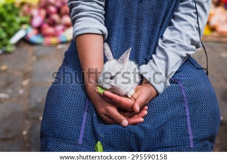 a small bunny sitting on a young girls lap - stock photo