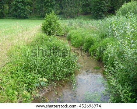 a small calm stream in a high reed ans grass - stock photo