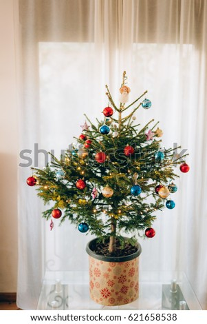 Christmas Tree Pot Stock Images Royalty Free Images Vectors  - Miniature Christmas Trees With Lights