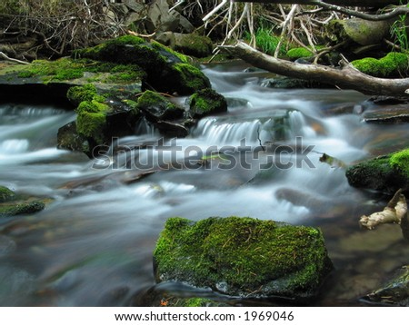 A small creek is flowing around moss covered rocks. - stock photo