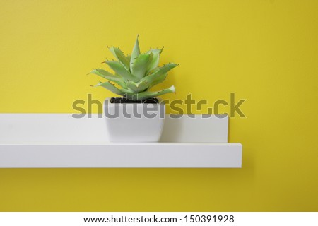 A small green plant on the white shelf, yellow wall - stock photo