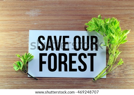 necessity to preserve our forest essay Save our forests save our earth save our forest essay but unfortunately most indians don't understand the importance of this rich wealth of forest and.
