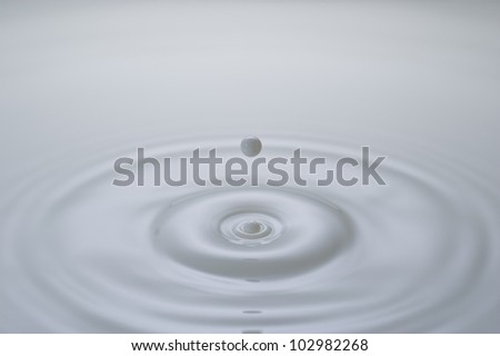 A small milk drop before it fall on the milk surface. You can see the ripples formed by the last drop on the surface. - stock photo