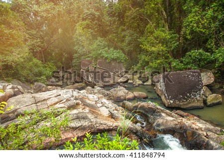 A small mountain river in a tropical jungle. Beautiful bright landscape