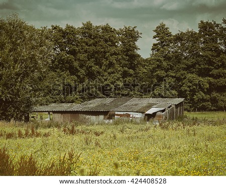A small neglected barn in a forest in the Netherlands, filtered to an old, analogue camera moody style.