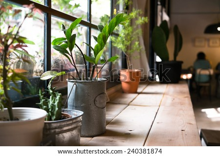 A small plant pot displayed in the window - stock photo
