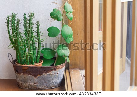 A small plant pot displayed in the window