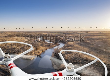 A small quadcopter drone flying over river landscape with Canadian geese, focus on drone motors and propellers. - stock photo