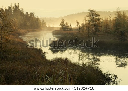 A small river in northern Minnesota on a misty morning - stock photo