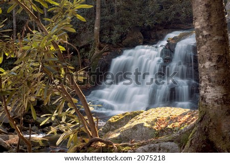 A small secluded waterfall in the forests of West Virginia. I like this composition with the tree and rhododendron bush in the foreground - stock photo