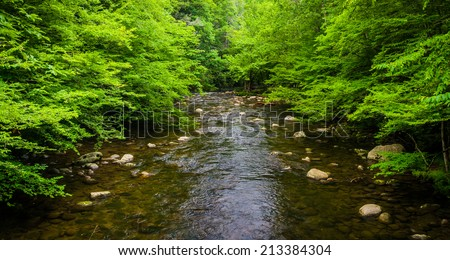 A small stream, at Great Smoky Mountains National Park, Tennessee. - stock photo