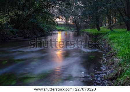 A small stream in the forest at sunset - stock photo