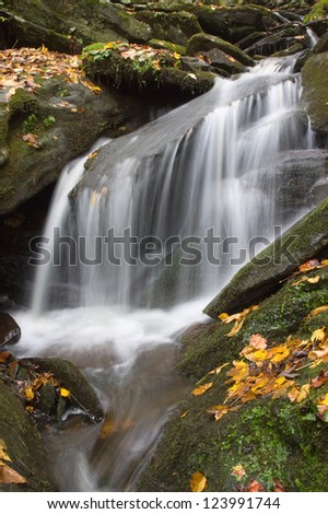A small stream waterfall with moss covered rocks and fall foliage