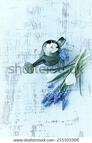 A small vintage watering can and spring flowers - stock photo