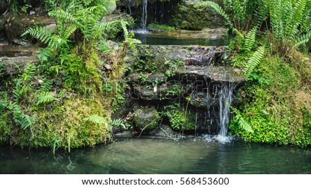 Winsome Watering Garden Stock Images Royaltyfree Images  Vectors  With Remarkable A Small Waterfall In The Forest Garden Rayong Thailand With Endearing Screen Garden Also Wyevale Garden Centre Milton Keynes In Addition H Lanzarote Gardens And Spring Gardens Aberdeen As Well As Sarah Duke Gardens Durham Nc Additionally York Gardens From Shutterstockcom With   Remarkable Watering Garden Stock Images Royaltyfree Images  Vectors  With Endearing A Small Waterfall In The Forest Garden Rayong Thailand And Winsome Screen Garden Also Wyevale Garden Centre Milton Keynes In Addition H Lanzarote Gardens From Shutterstockcom
