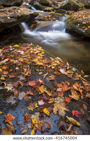 A small waterfall surrounded by bright fall colors.