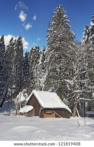 A small wooden hut in the snow-covered pine forest - stock photo