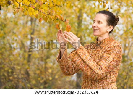 A smiling adult caucasian woman is picking orange apple leaves in autumn - stock photo