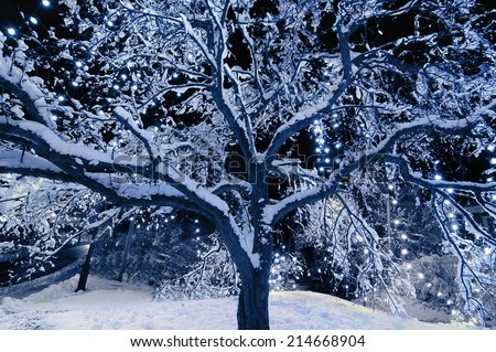 A snow covered tree outside with Christmas lights hanging from the branches at night.  Toned in blue color.  - stock photo