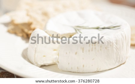 a soft cheese on a plate with crackers and  cut wedge - stock photo