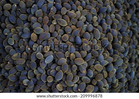 A special tropical black fruit (Trai Xay) - stock photo