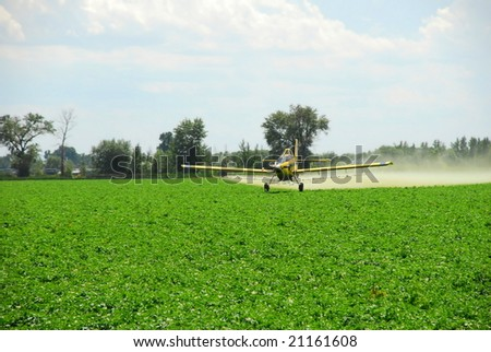 "A spray plane flies ""down in the weeds"" while it applies a zinc mixture to potato vines to protect against Late Blight. - stock photo"