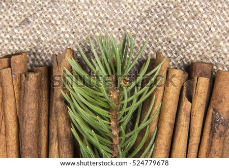 a sprig of green spruce and cinnamon sticks on a background of gray linen