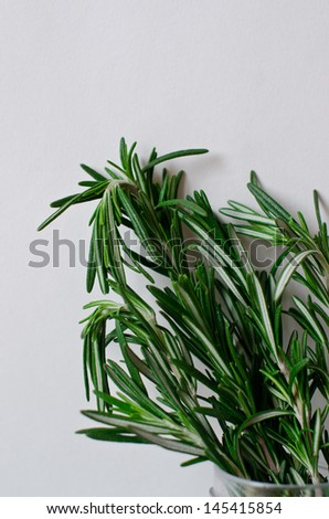 a sprig of rosemary - stock photo