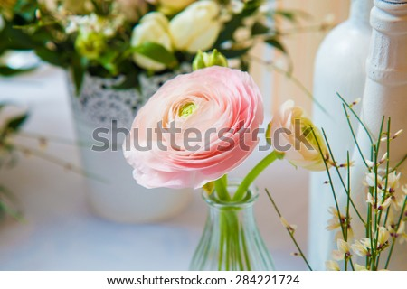 A spring primrose is in a bouquet, floral background. - stock photo