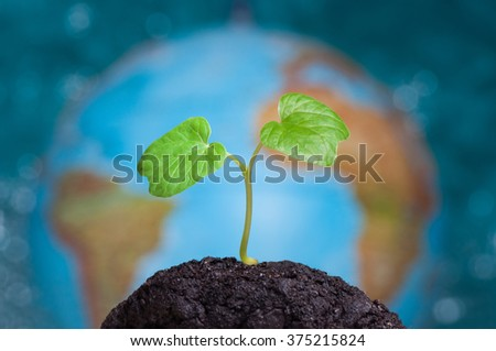 A sprout grows in soil. Our planet Earth is on background. - stock photo