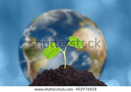 A sprout grows in soil. Our planet Earth is on background. Ecology concept. - stock photo