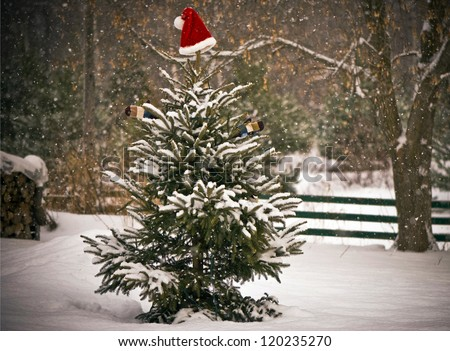 A Spruce tree in the snow  decorated with a Santa hat and mitts, and a little chickadee perched on one of its branches. - stock photo