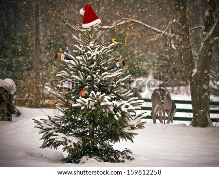 A Spruce tree in the snow decorated with a Santa hat and mitts, with colorful winter birds perched on its branches, with a mother, and baby deer looking on in the background.