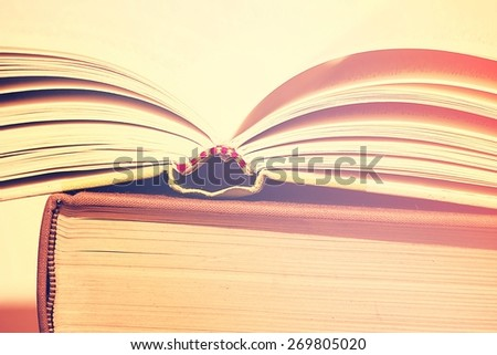 A Stack of Books with Opened Book on Top