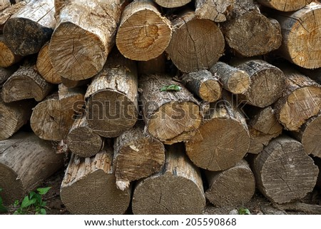 A stack of cut logs for firewood                                - stock photo