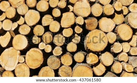 a stack of oak wood - wooden background