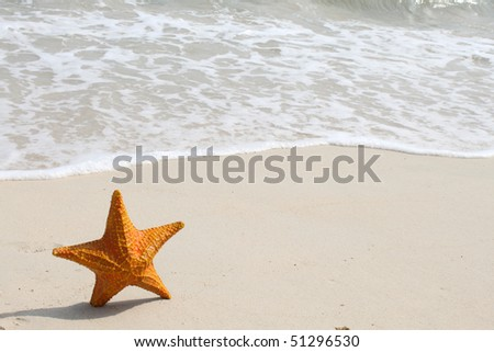A starfish besides sea shore on a beach with white sand and water. - stock photo