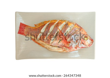 A Steamed Tilapia fish - stock photo