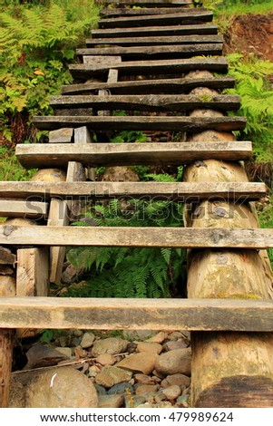 A steep wooden stairway in a mountain forest. The trail in the reserve