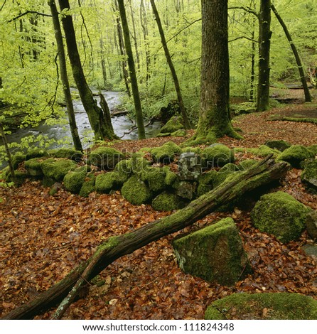A stone wall covered with moss, Skane, Sweden - stock photo