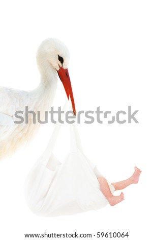 A stork holding a white bag with a baby in his beak - stock photo