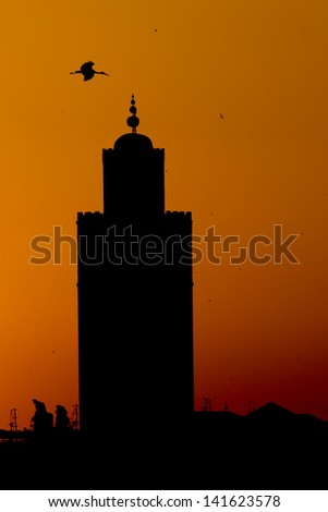 A stork silhouette on Marrakech Mosque sunset view - stock photo