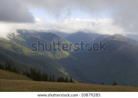A stormy day in Olympic National Park - stock photo