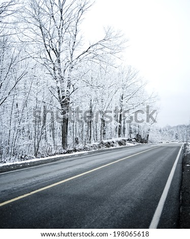 A straight long road travels past snow covered trees.