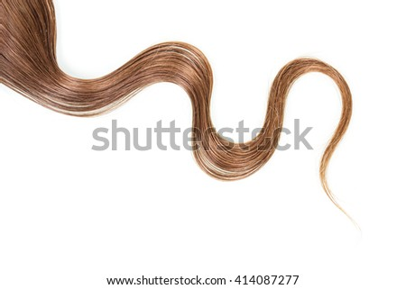 A strand of long, frizzy, brown hair isolated on white background.