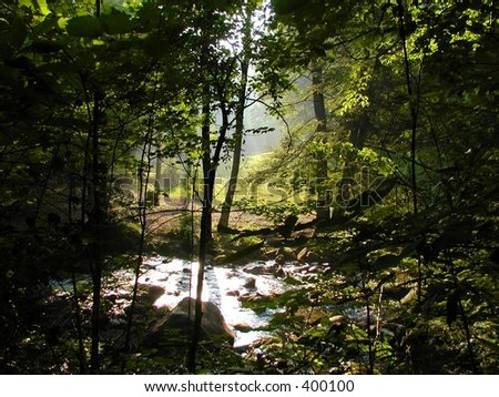 A Stream of Sunlight - stock photo
